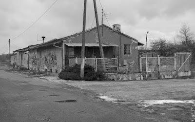 http://fotobabij.blogspot.com/2016/02/puawy-ulponocna-ofiary-zmian_37.html