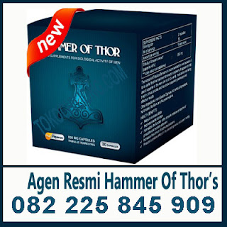 agen obat hammer of thor di banjarmasin 082225845909 agen obat