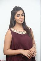 Nikki Galrani in a Brown Shining Sleeveless Gown at Nakshatram music launch ~  Exclusive 070.JPG