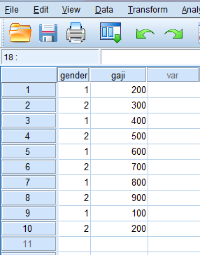 input data di data view spss data editor