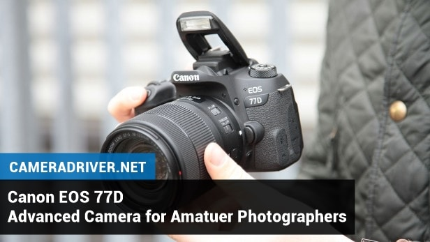 Canon EOS 77D: Advanced Camera for Amatuer Photographers