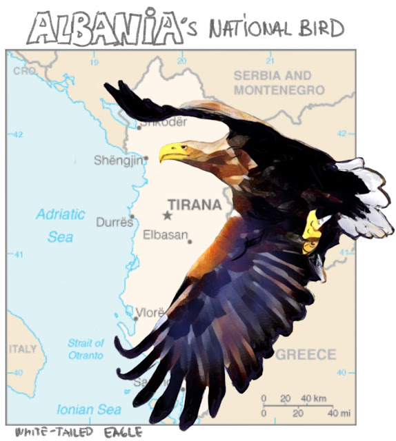 Albania's national bird Painting by Ulf Artmagenta