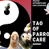 The Tao of Parrot Care and Bonding