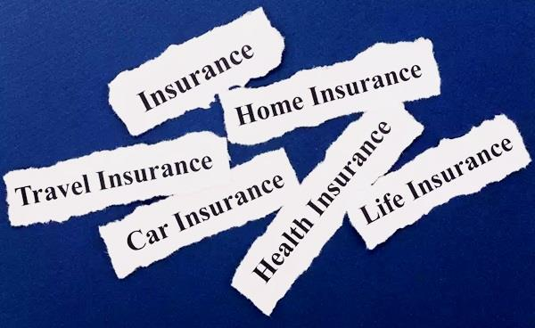 pengertin asuransi