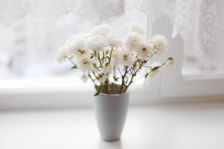 Flores naturales en un tarro