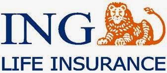 Ing vysya bank forex card online