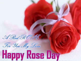 Happy Rose Day 2017 Photos & Pics