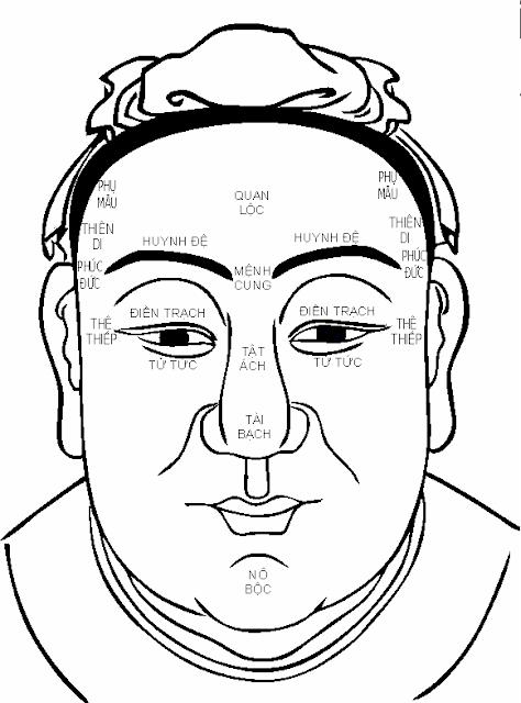 13 lá số trên mặt thể hiện vận mệnh của bạn - Cách xem tướng mặt chuẩn nhất