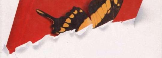 En las alas de las mariposas, de Germán Sánchez Espeso - Cine de Escritor