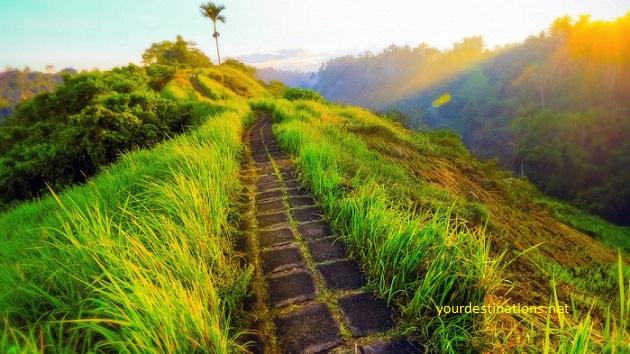Mount Campuhan Ubud