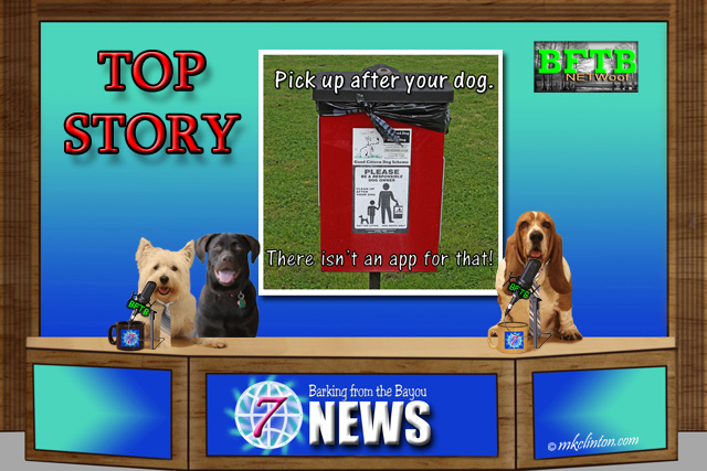 BFTB NETWoof News with Pooper app hoax story