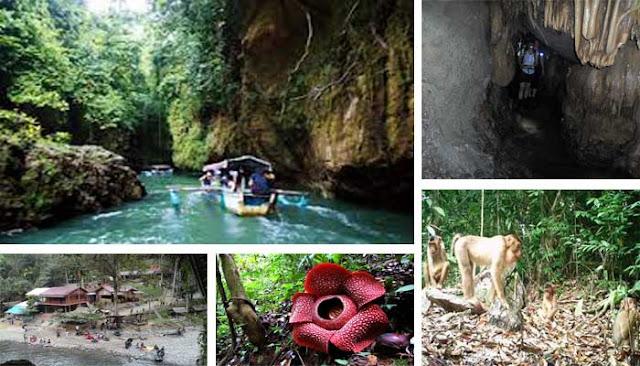 Tempat Wisata Keren Di Kabupaten Langkat