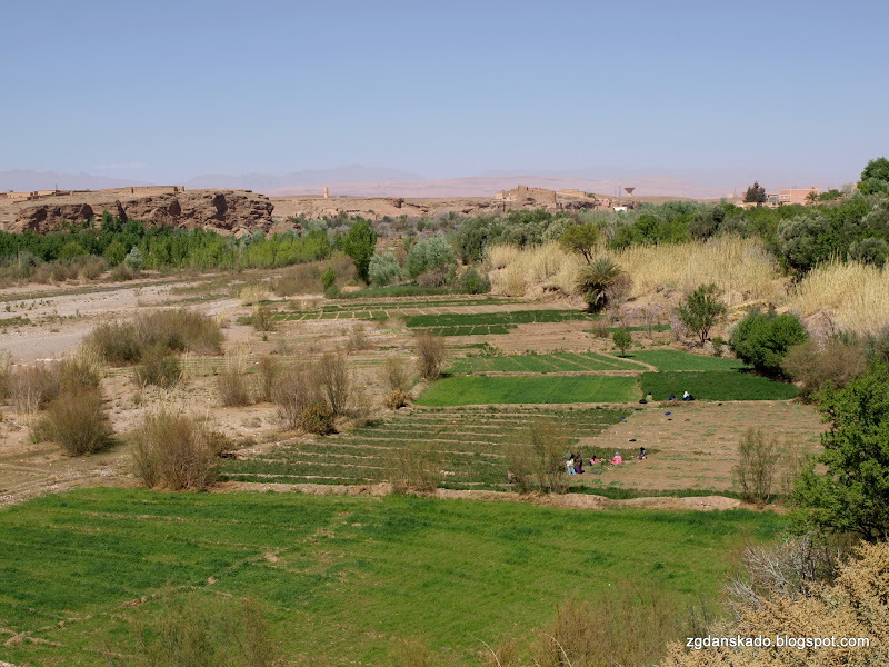 Z Merzougi do Ouarzazate