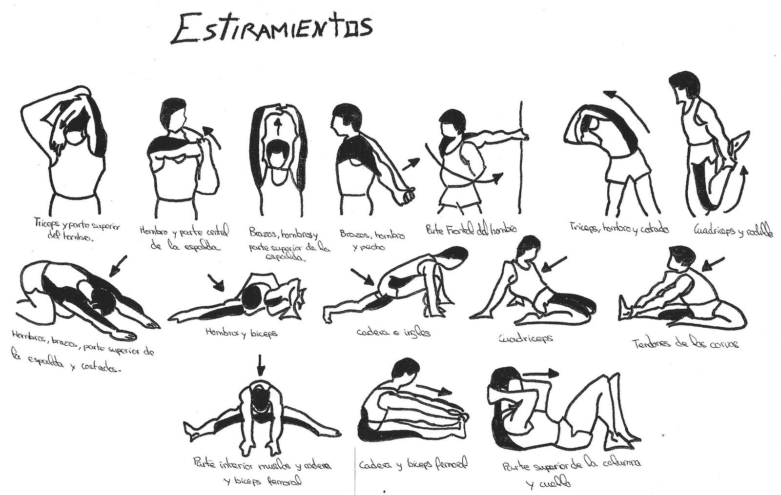 tipos de ejercicios de calentamiento deportivo