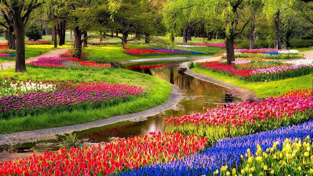 Park met bloemen in alle kleuren