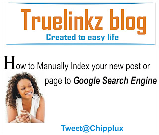 How to manually index your new post or page to google search engine
