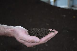 Metode pembuatan pupuk kompos sederhana lengkap