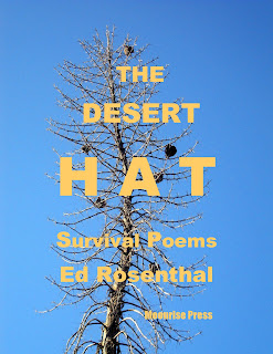 Rosenthal's The Desert Hat, photo of Mojave Yucca by Maja Trochimczyk