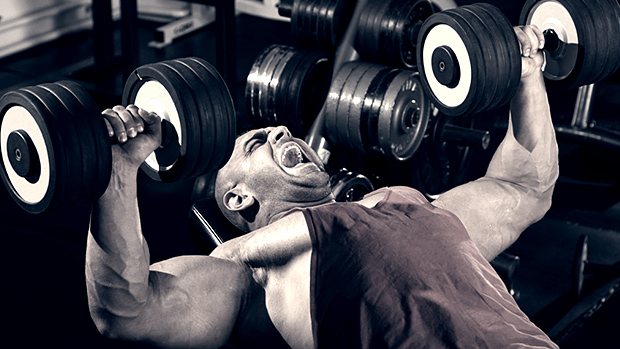 training chest