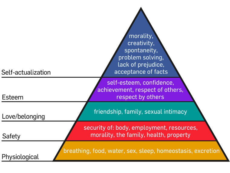 Abraham maslow: primate dominance behavior essay