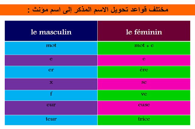 تذكير و تأنيث الأسماء le masculin et le féminine des noms