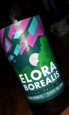 Elora Borealis pale ale beer