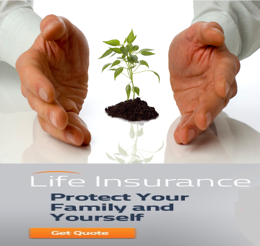 No Physical Life Insurance Quotes: Insurance Quotes