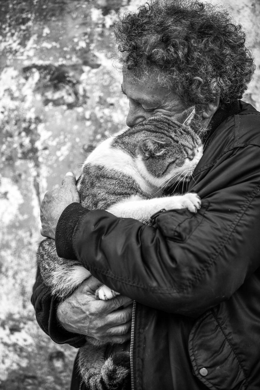 Мужчины и коты. Фотограф Sabrina Boem