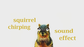 how sounds the chipmunk