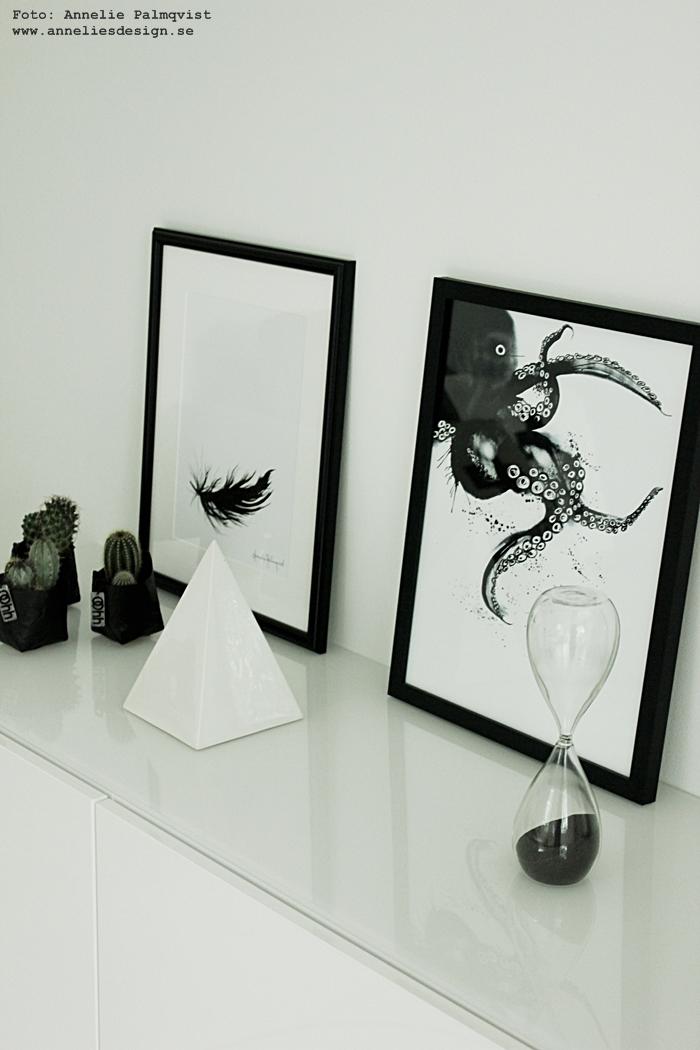 konsttryck, poster, bläckfisk, bläckfiskar, svart fjäder, fjädrar, tavla, tavlor, poster, print, prints, svartvitt, svart och vitt, svartvita, vitt, vit, bestå, ikea, annelies design, webbutik, webbutiker, webshop, inredning, Oohh kruka, krukor, kaktus, kaktusar, timglas,
