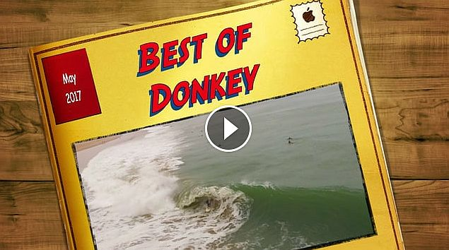 Best of Donkey Bay May 2017