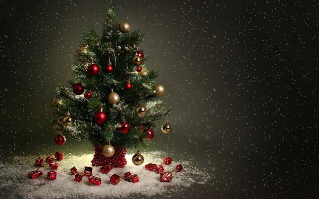 best-merry-xmas-photo