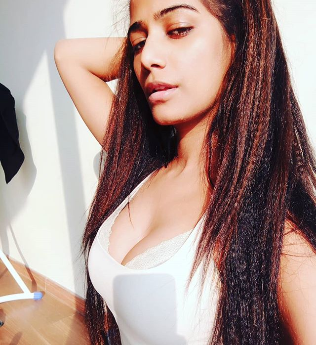 Bollywood Actress Poonam Pandey Hot Photos And Pic