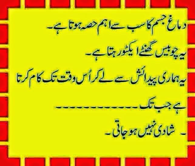 Demag Jokes In Urdu 2014, Demag Urdu Latify 2014, Shadi