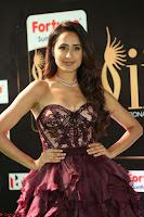 Pragya Jaiswal Sizzles in a Shantanu Nikhil Designed Gown  Exclusive 036.JPG