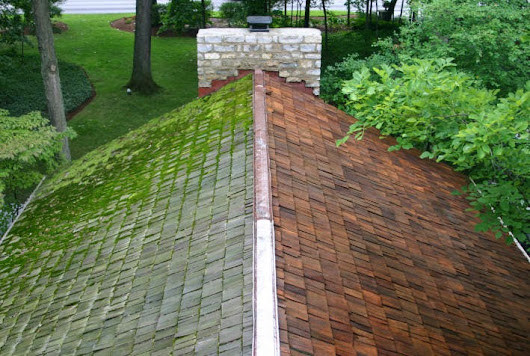 Pressure Washing Your Roof
