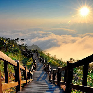 Taiwan, stairway to heaven, stairway to the clouds, wood stairwell in the mountains