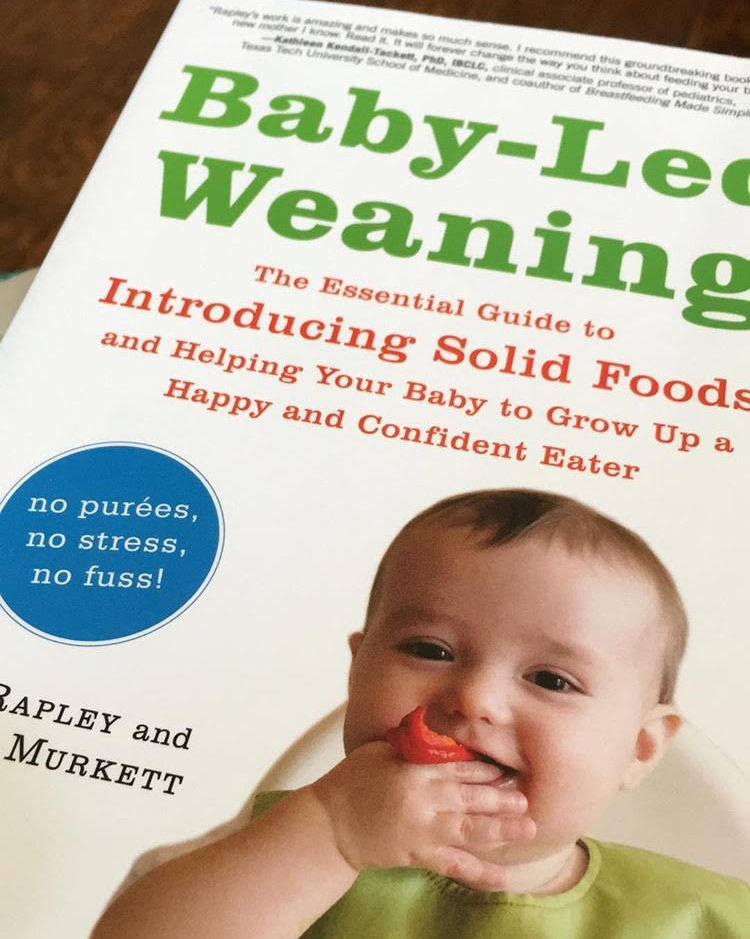 Baby-Led Weaning + 6 Month Update