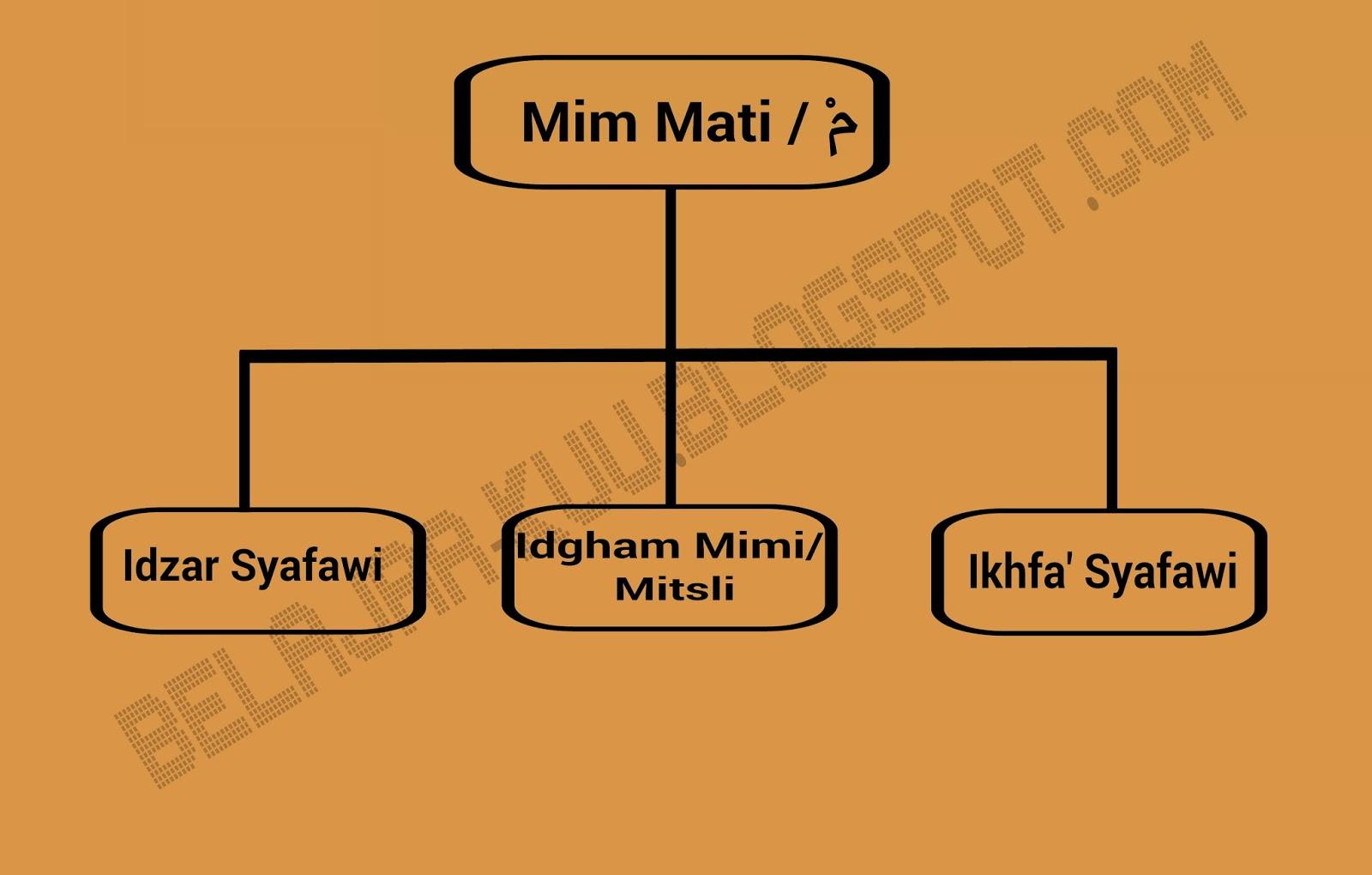 Hukum Mim Mati Mim Sukun Beserta Contohnya Belajar Tajwid