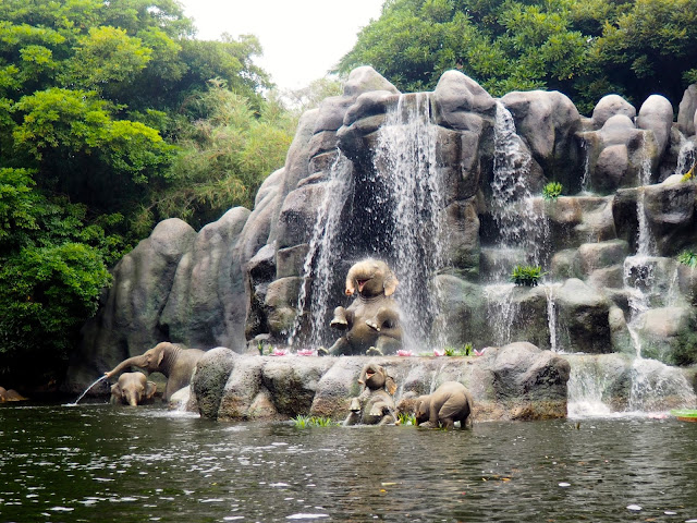 Elephants on the Jungle Cruise, Tokyo Disneyland, Japan