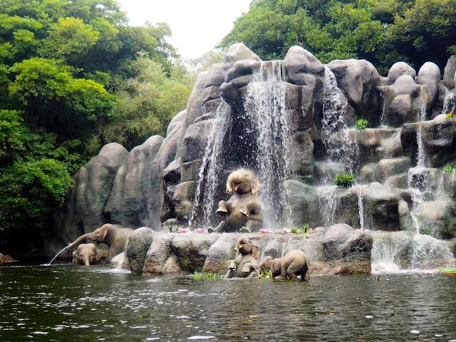 Elephants on the Jungle Cruise, Tokyo Disneyland, Japan
