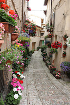 4 Cannolis Favore Spello Italy