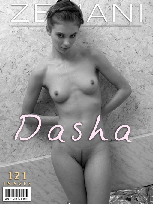 [Zemani] Introducing Dasha