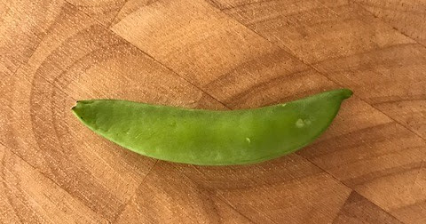 A short salute to the sugar snap pea