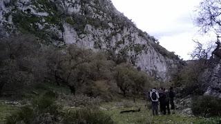 Ruta ornitológica