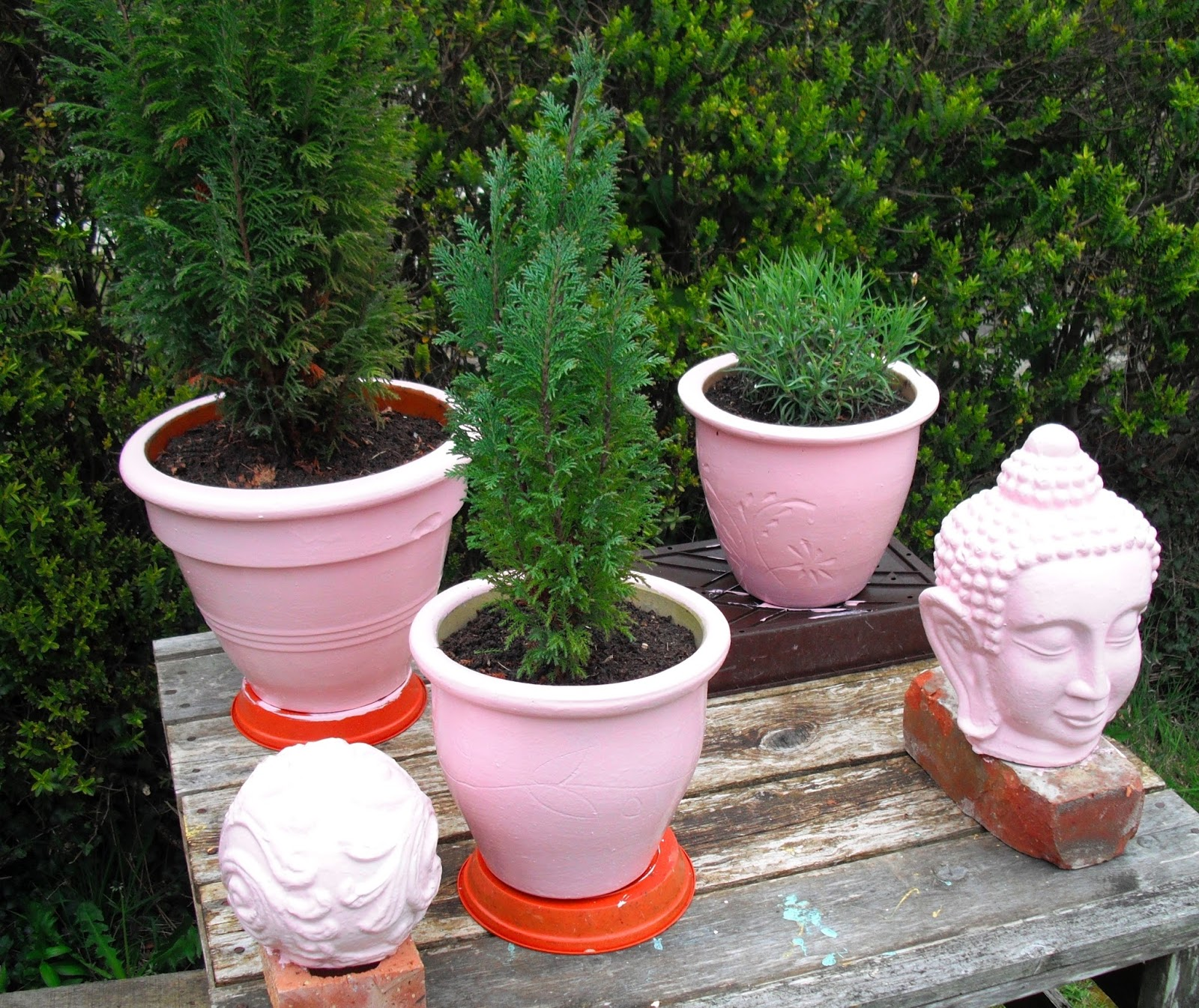 Life After Money Pink Plant Pots Are In