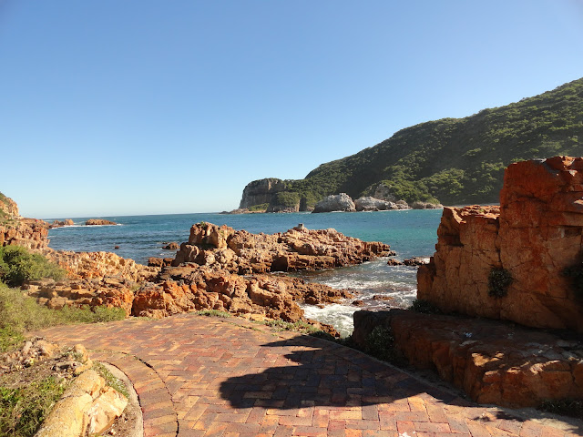 DRIVING ALONG GARDEN ROUTE| PART I| FROM CAPE TOWN TO KNYSNA