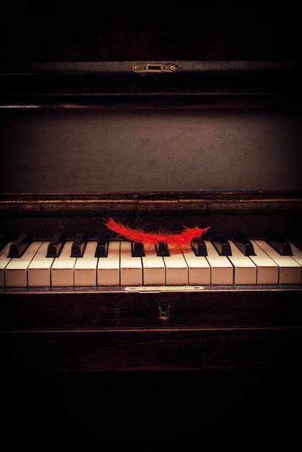 A red feather on the keys of a piano