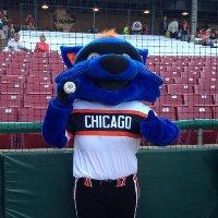 Swiper, the Chicago Bandits mascot