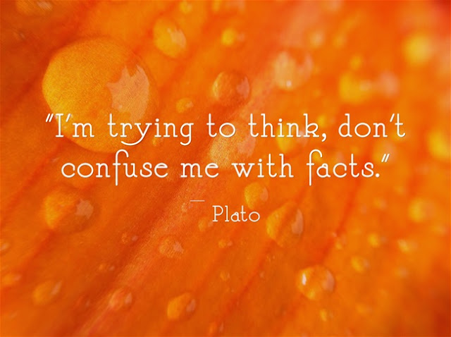Plato do not confuse me with facts